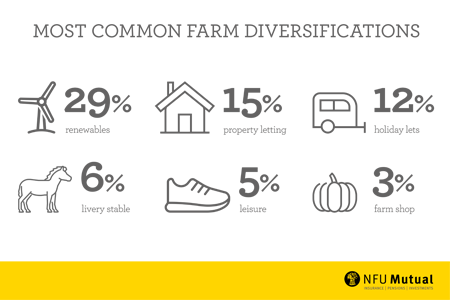 Diversification Infographic