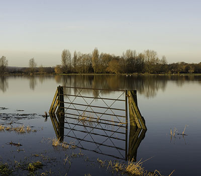 Farming Recovery Fund is being given to farmers affected by summer flooding