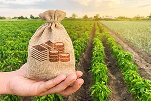 Agricultural Finance continues