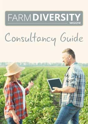 Consultancy Guide front cover